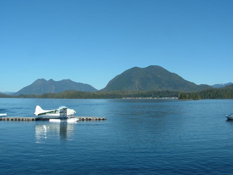 Plane on the water, in front of a mountain.